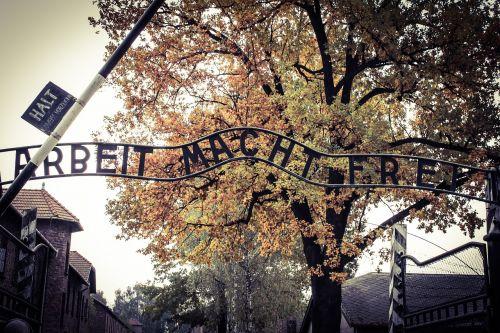 auschwitz,vartai,iškabą,užrašas,naikinimo stovykla,koncentracijos stovykla,darbo stovykla,mirtis,muziejus,paminklas,ruduo,medis,lapija,gamta