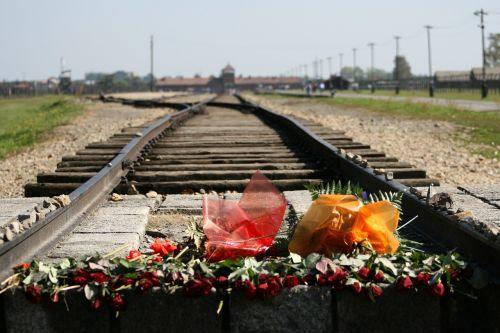 auschwitz birkenau concentration camp holocaust