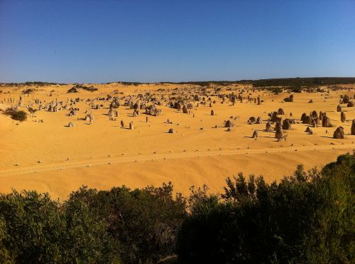australia pinnacles nambung national park