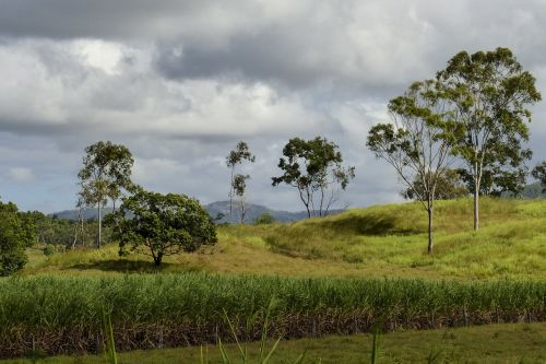 australia landscape nature