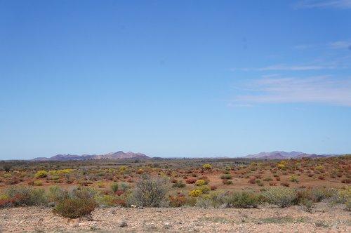 australian desert  outback australia  landscape