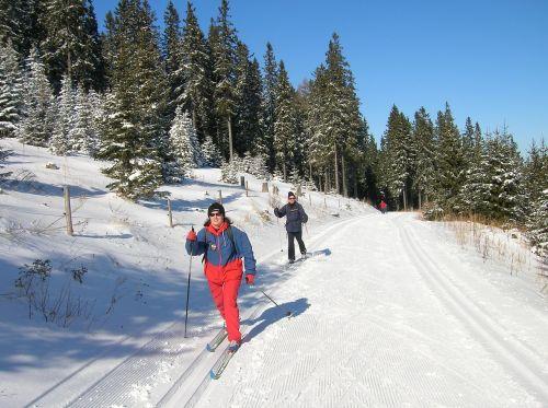 austria panoramaloipe skis