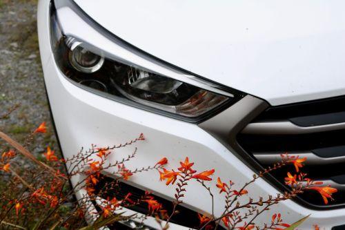 auto parked spotlight