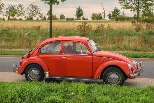 auto vehicle vw beetle