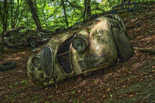 auto  car cemetery  oldtimer