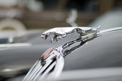 auto  cool figure  vehicle
