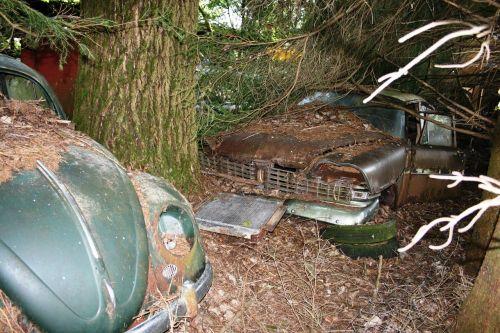 automatinis,automobilių kapinės,senas,rusted,vw vabalas,oldtimer