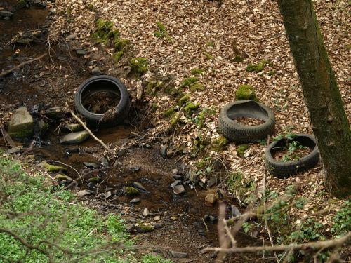 auto tires mature tires