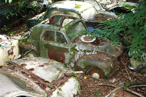 autos old car cemetery