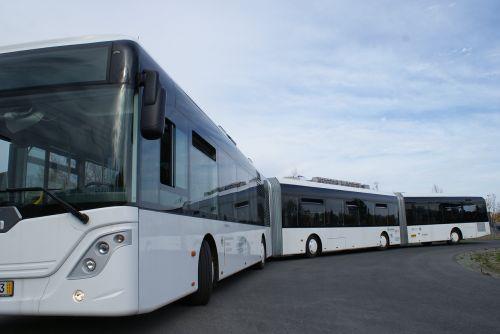 autotram bus public transport