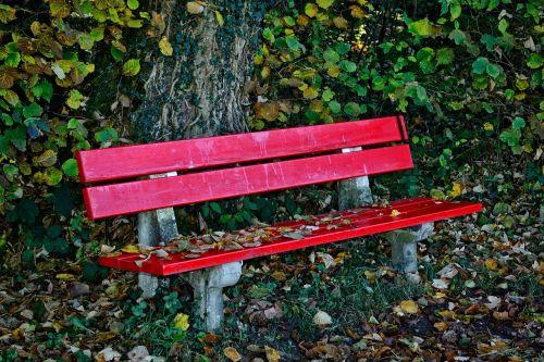 ruduo,stendas,bankas,sėdynė,gamta,out,miškas,poilsis,poilsio vieta,idiliškas,taikus,sėdėti,pertrauka,romantiškas