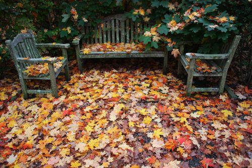 ruduo,kritęs,lapai,parko suoliukas