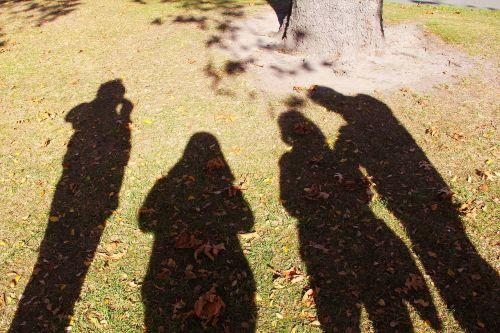 ruduo,gražus,meilė,šešėliai,atspindys,Draugystė,christchurch,Naujoji Zelandija