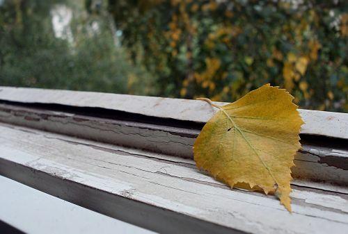 autumn september sheet