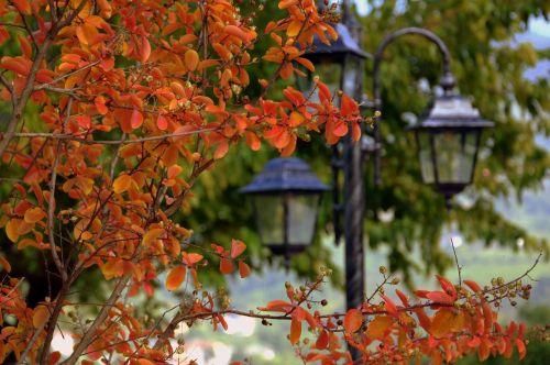 autumn leaves lamppost