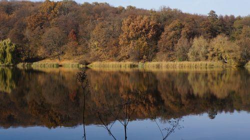 autumn lake nature