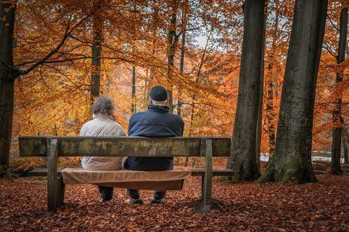 autumn forest pair