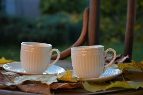 autumn mugs leaves