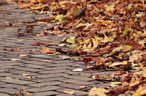 autumn away leaves