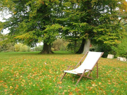 autumn park deck chair