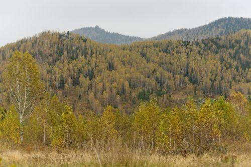 autumn mountains landscape
