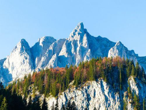 autumn summit alpine