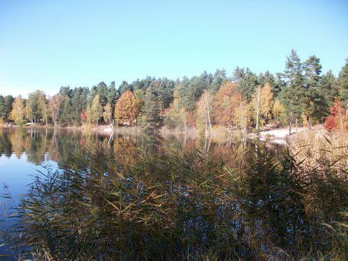 autumn lake bank