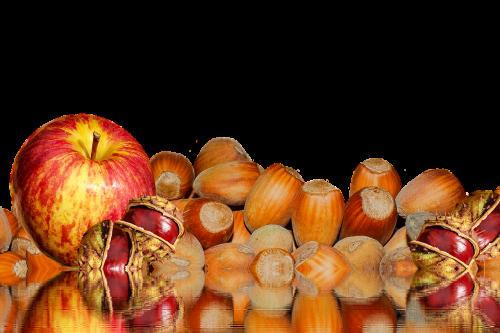autumn chestnut apple