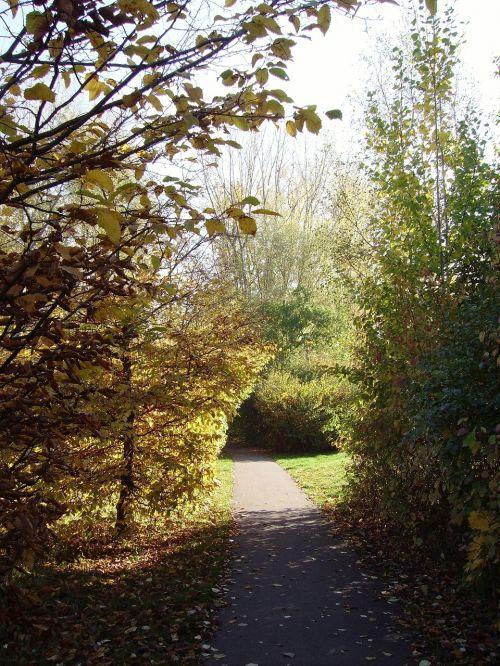 autumn away park