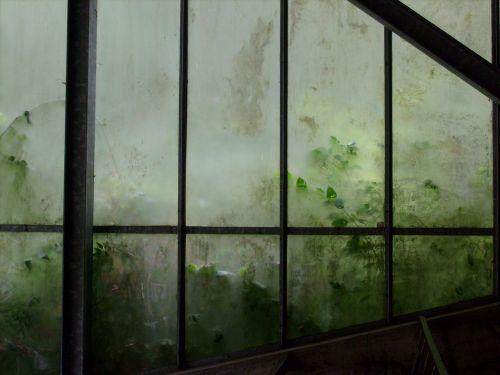autumn greenhouse gloomy