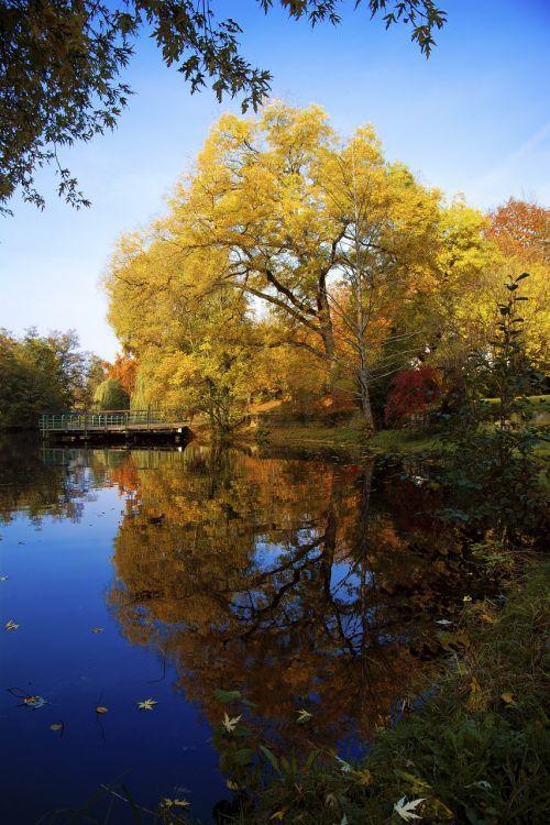 autumn heilbronn pfühlpark