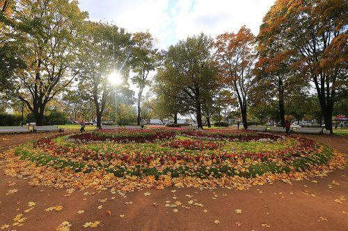 autumn fall colors mood