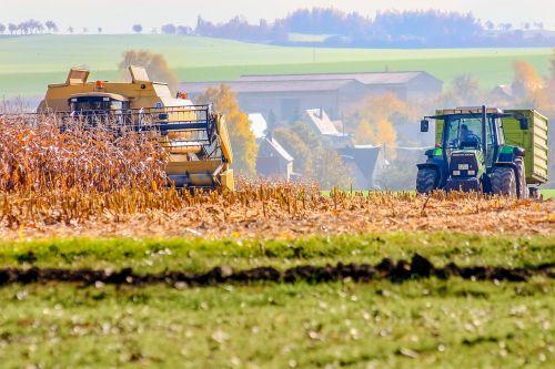 autumn fieldwork harvest