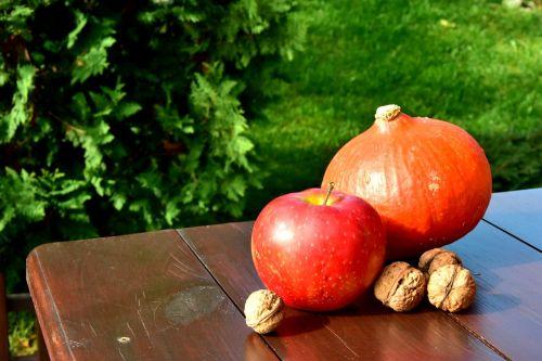 autumn pumpkin walnut
