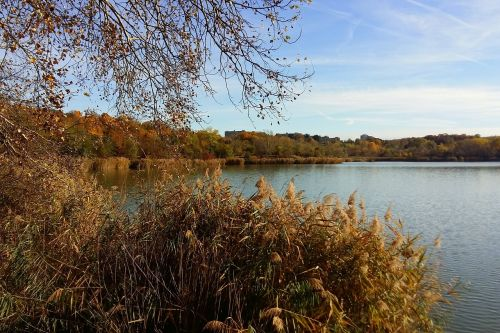 autumn nature recreation area
