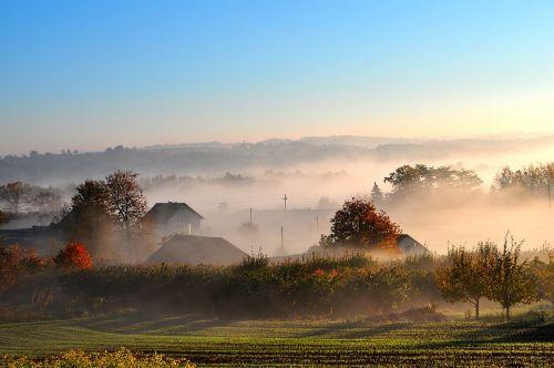 autumn the fog morning