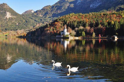 autumn autumn landscape fall color