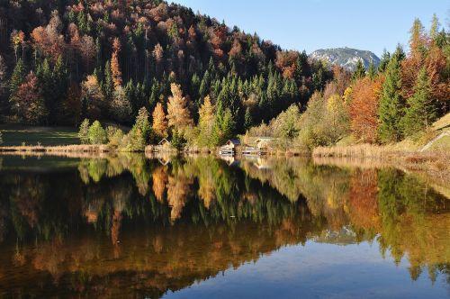 autumn autumn mood nature