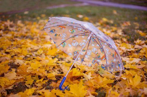 autumn umbrella listopad