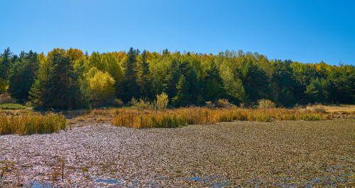 autumn season landscape