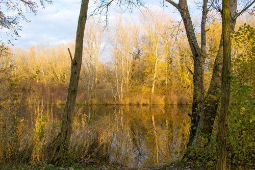 autumn jazero lake