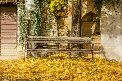 autumn mood autumn mood