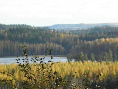 autumn archipelago saimaa