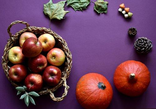 autumn  apples  basket