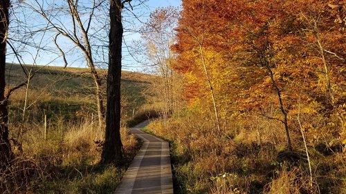 autumn  fall  boardwalk