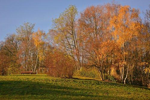 autumn  landscape  autumn landscape
