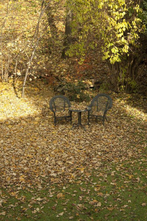 autumn garden nature