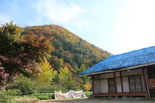 autumn landscape in autumn