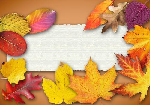 autumn banner poster