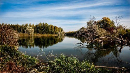 autumn river nature
